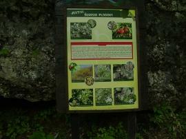 Planinarski izlet_58