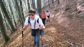 Planinarski izlet, listopad_53
