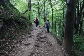 Planinarski izlet, rujan_13